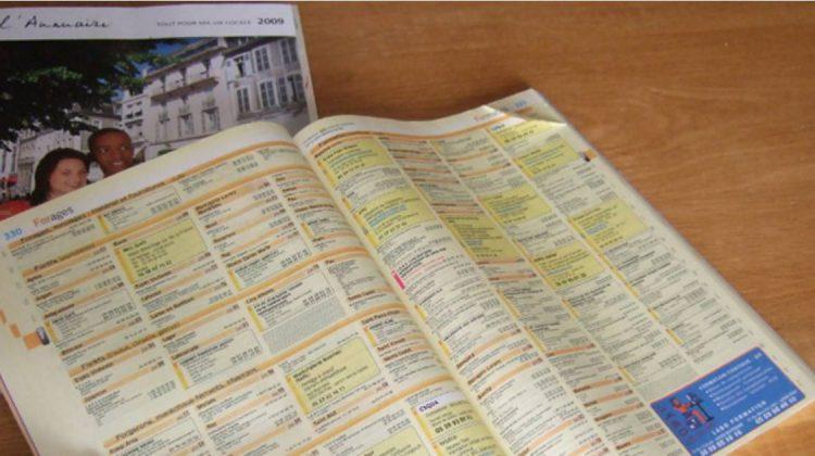 Les actionnaires individuels des Pages Jaunes français